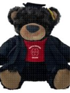 "Image for the North Central College Grad Black Bear ""Beau"" product"