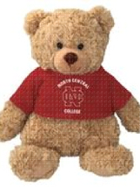 Image for the North Central College Cuddle Buddy w/ T-shirt plush each sold separately product