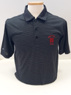 Image for the North Central College Quest Polo by Antigua product
