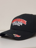 Image for the North Central College Alumni Hat by the Game product
