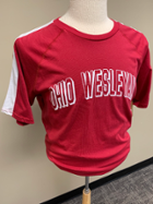 Image for the Shoulder Stripe Ohio Wesleyan T-Shirt product