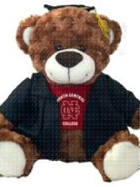 "Image for the North Central College Brown Bear ""Bella"" product"