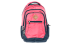 Image for the Pink Dourada Everyday Backpack product