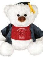 Image for the North Central College Grad Louie Plush Bear w/Cap&Gown product