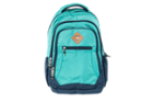 Image for the Teal Dourada Everyday Backpack product
