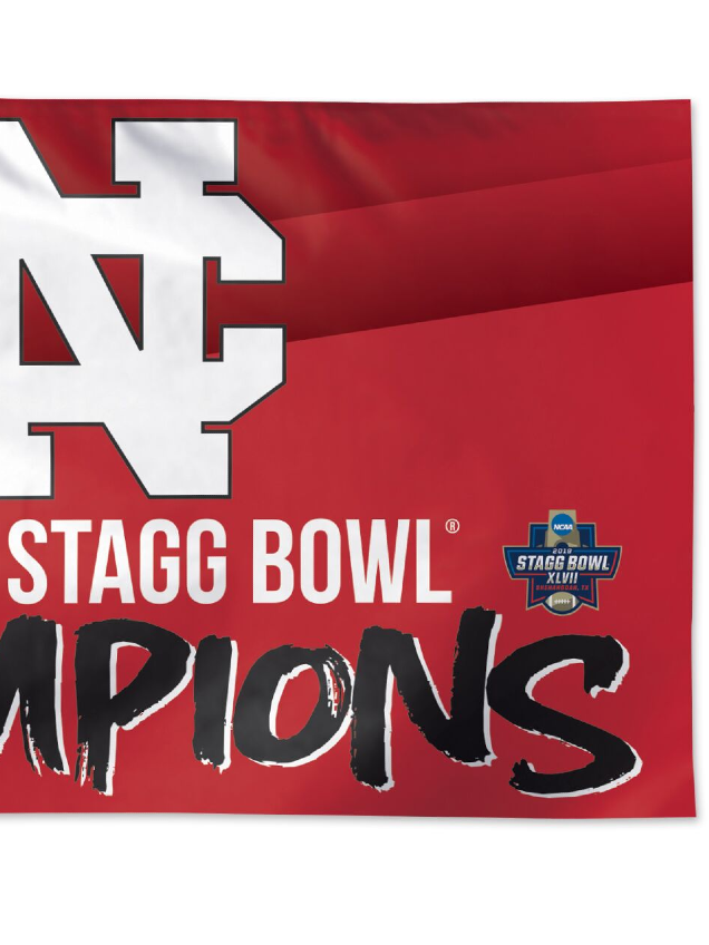 Alternative Image for the North Central College Championship 3x5 Flag product