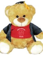 "Image for the North Central College Gold Bear  ""Fred"" product"